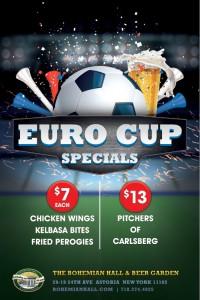 BRG-132_Euro_Cup-Poster_v1